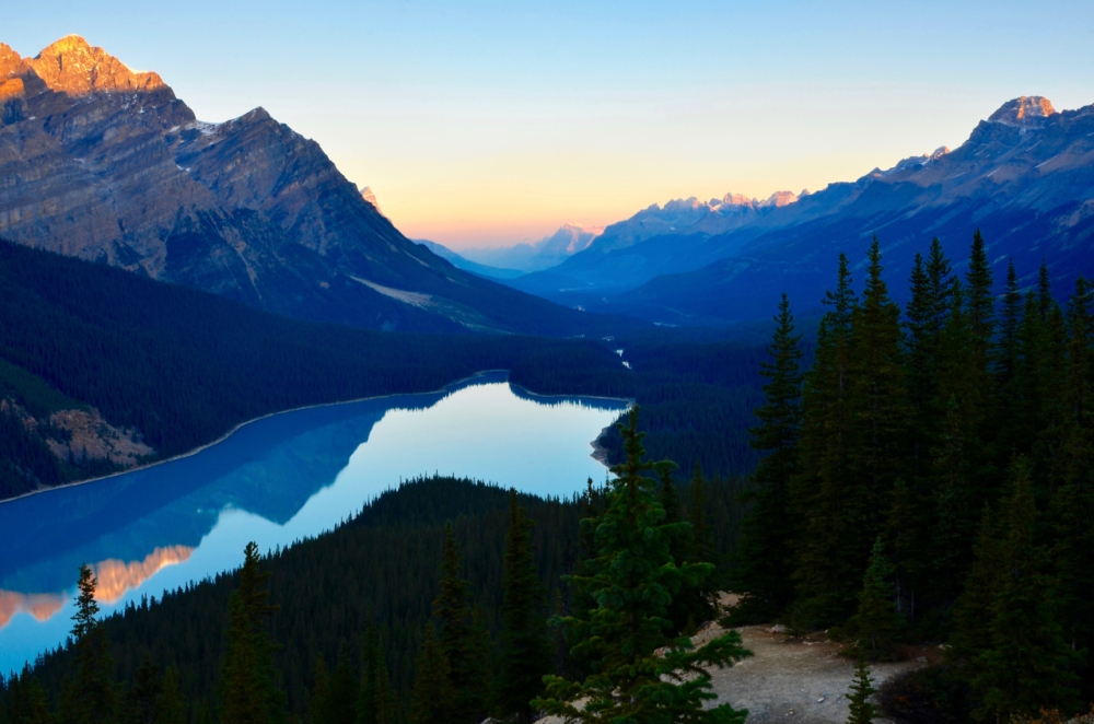 Peyto Sunrise
